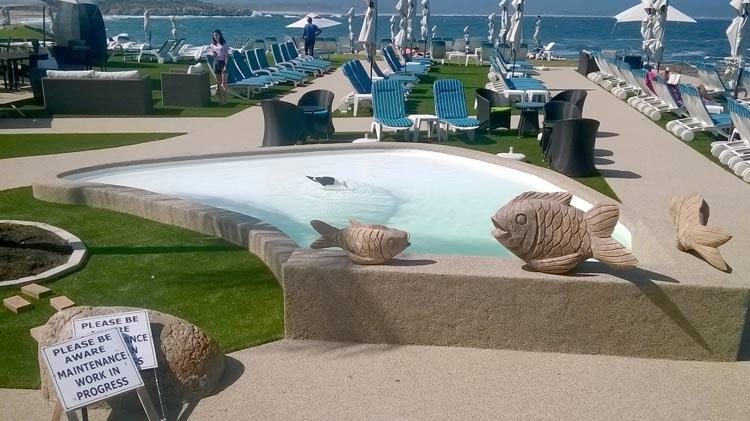 Beacon Isle Hotel Kiddies Pool